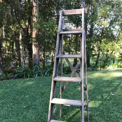 Rustic Timber ladder $60