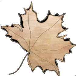 maple weddings and events
